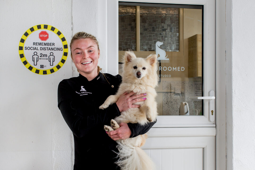 business portrait of dog groomer with dog