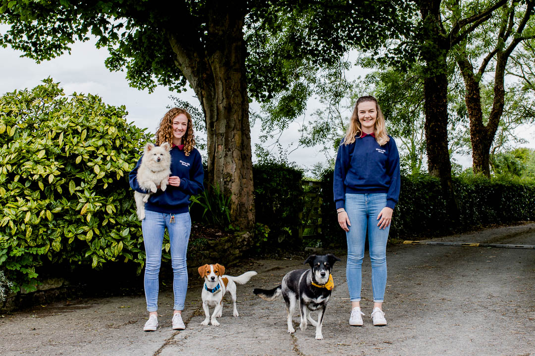 business photo at dog kennels - portraits of kennel staff and dogs