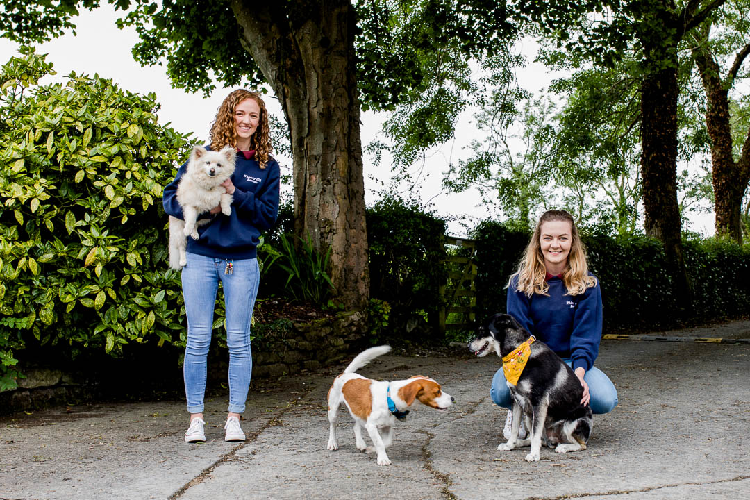 business portraits of dog kennel staff with dogs